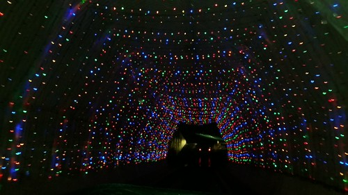 Christmas Lights at NHMS by Lapdog Creations