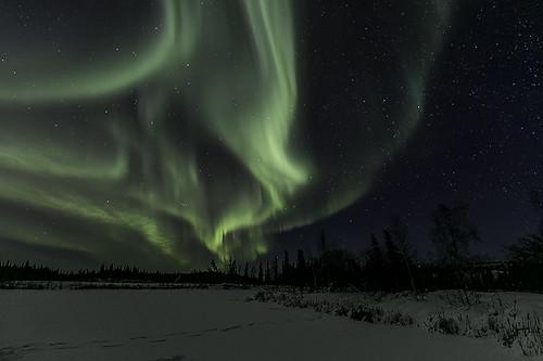 Aurora Feb 8, 2016-9209