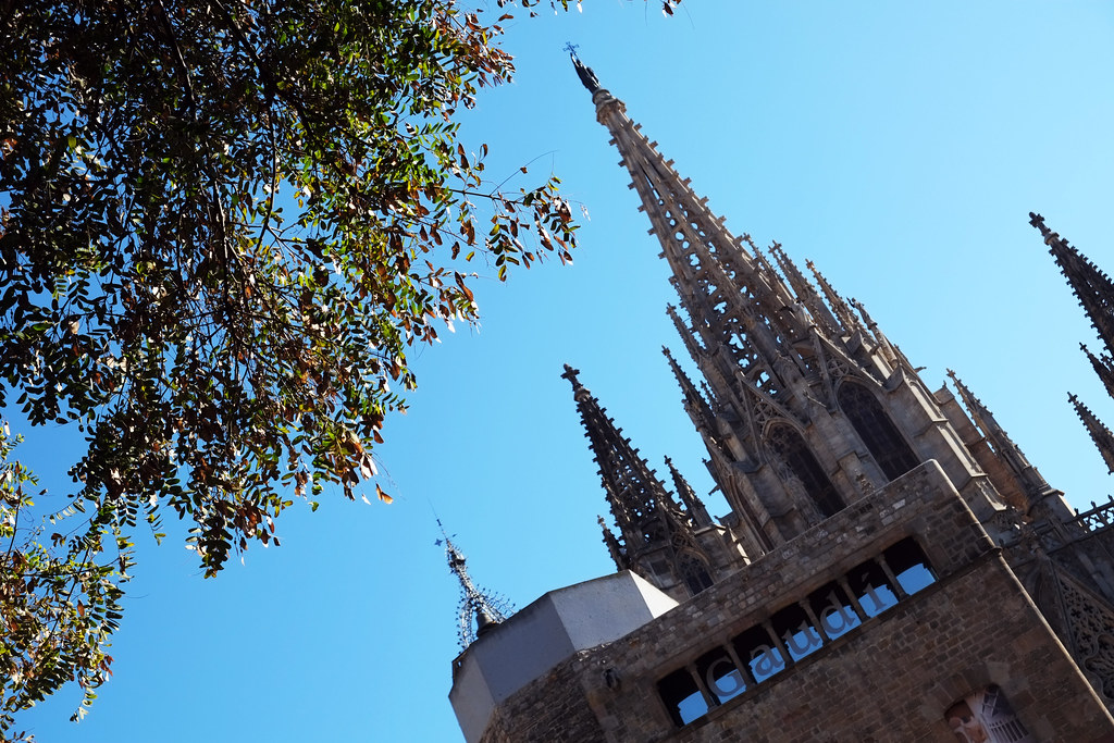Barcelona Cathederal