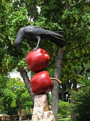 Two apples and a raven