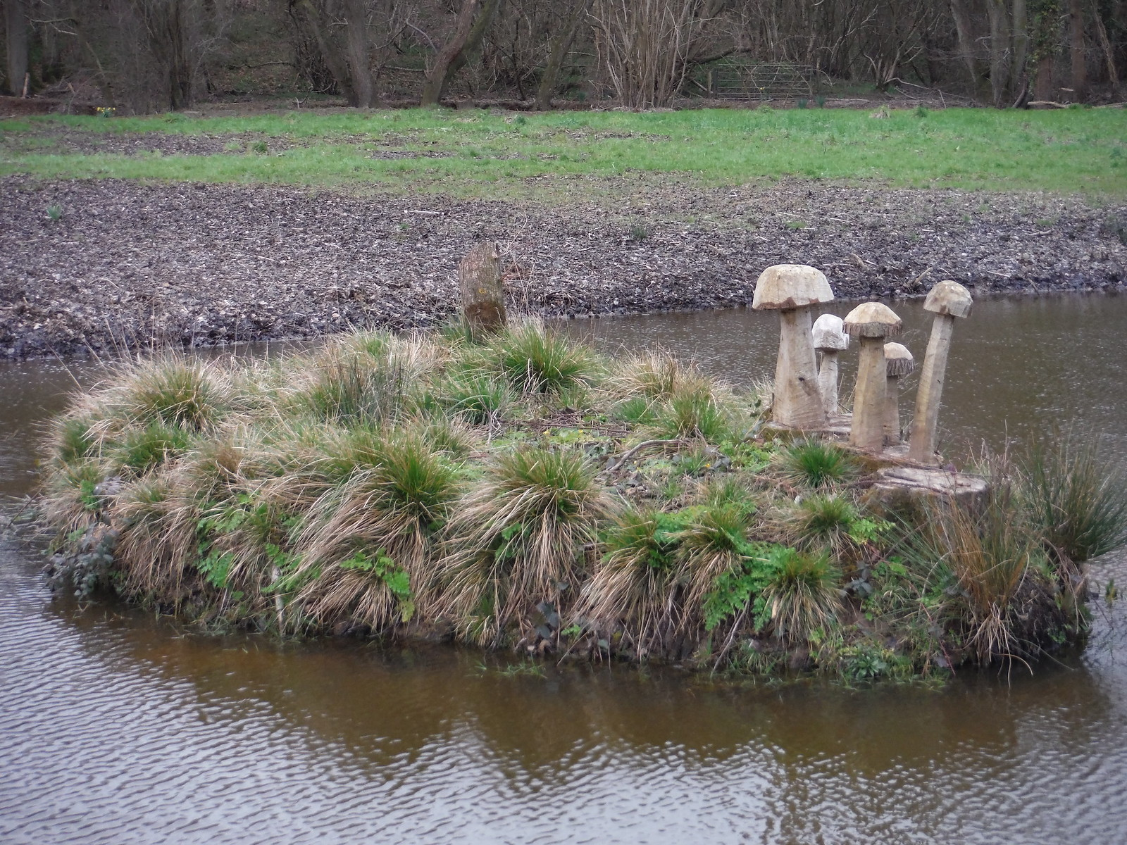 Wooden Mushrooms on Islet, Tickerage Castle SWC Walk 262 Uckfield to Buxted