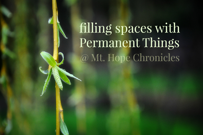 Permanent Things @ Mt. Hope Chronicles