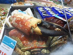 Giant crab at the markets
