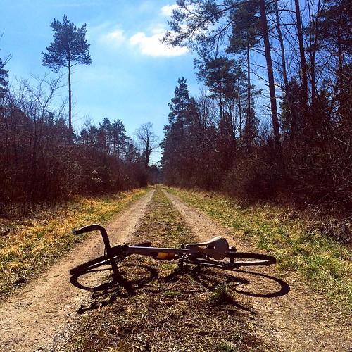 #springishere - for one day... #theroadlesstraveled #gravelgrinding #cxploring #victoirecycles