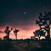Pink Nightfall by Atmospherics