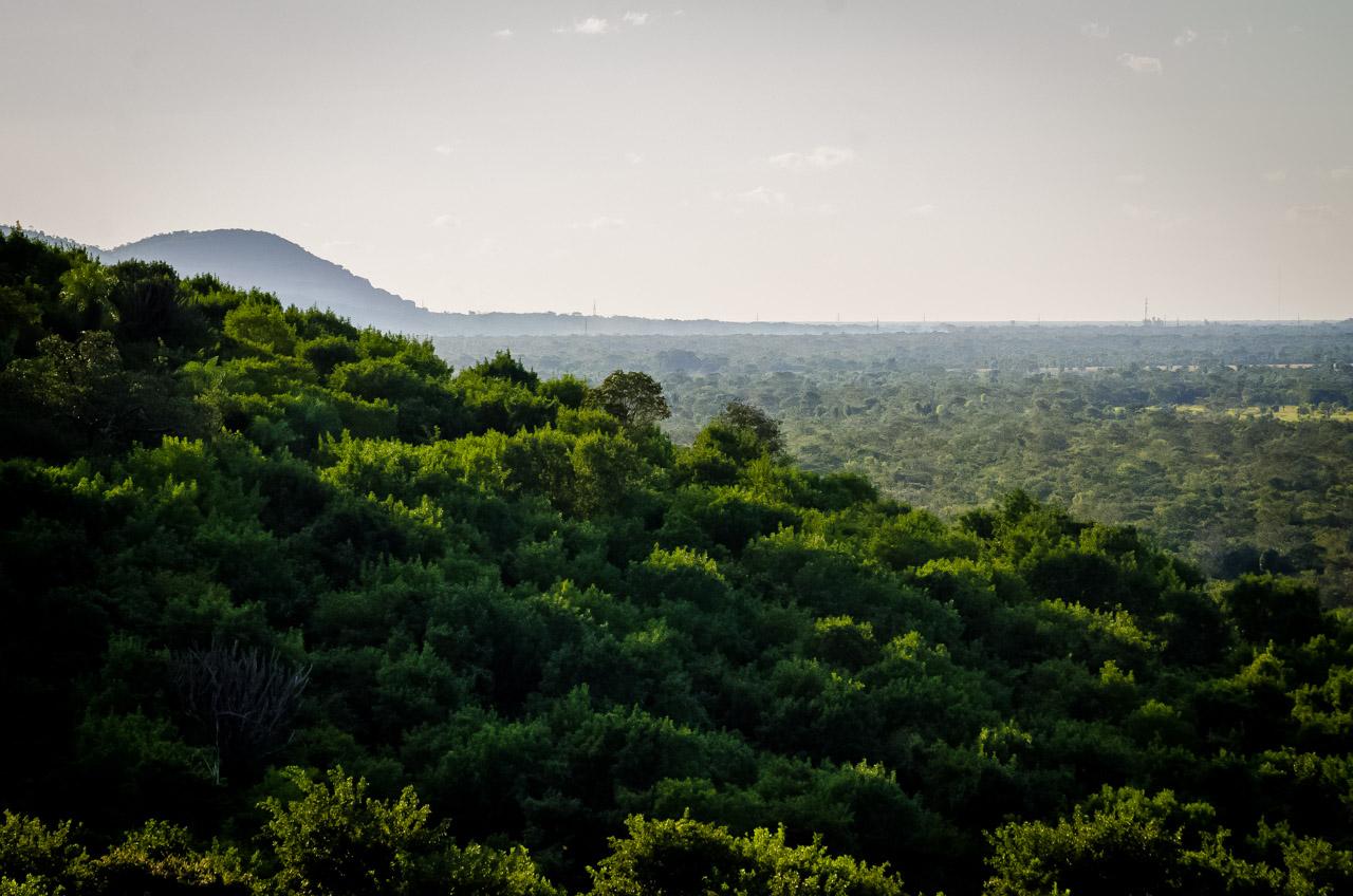 Camino a la caverna 14 de Julio, desde la cima de los montes de Tres Cerros puede verse mucha vegetación alrededor de la comunidad de Santa Elena. (Elton Núñez)