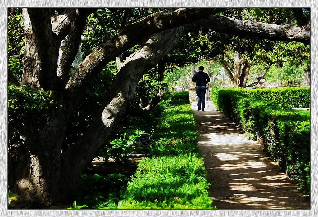 un solitario, pasea