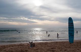 Image of  Narigama Beach  near  Hikkaduwa. beach surfing surfschool srilanka ceylon hikkaduwa hikkaduwabeach aframesurfschool