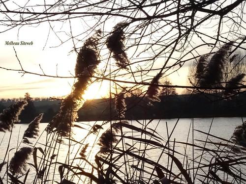 Ombre & lumière balade à l'étang