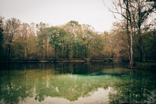 park longexposure winter water river landscape spring raw florida cloudy outdoor overcast santefe v1 swimminghole lightroom ndfilter columbiacounty nd8 mirrorless rumisland vsco springhunters rumislandspring neuraldensityfilter vscofilm