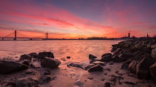 sunrise dawn zaltbommel waal martinusnijhoffbrug zonsopkomst sunrisecolors nikon1635mmf4 zonsopkomstwaal uiterwaardenwaardenburg