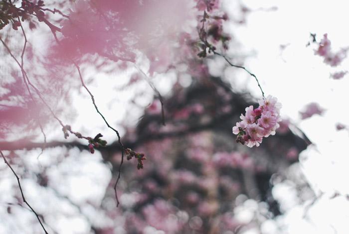 Foto-28.03.16,-23-13-30-2