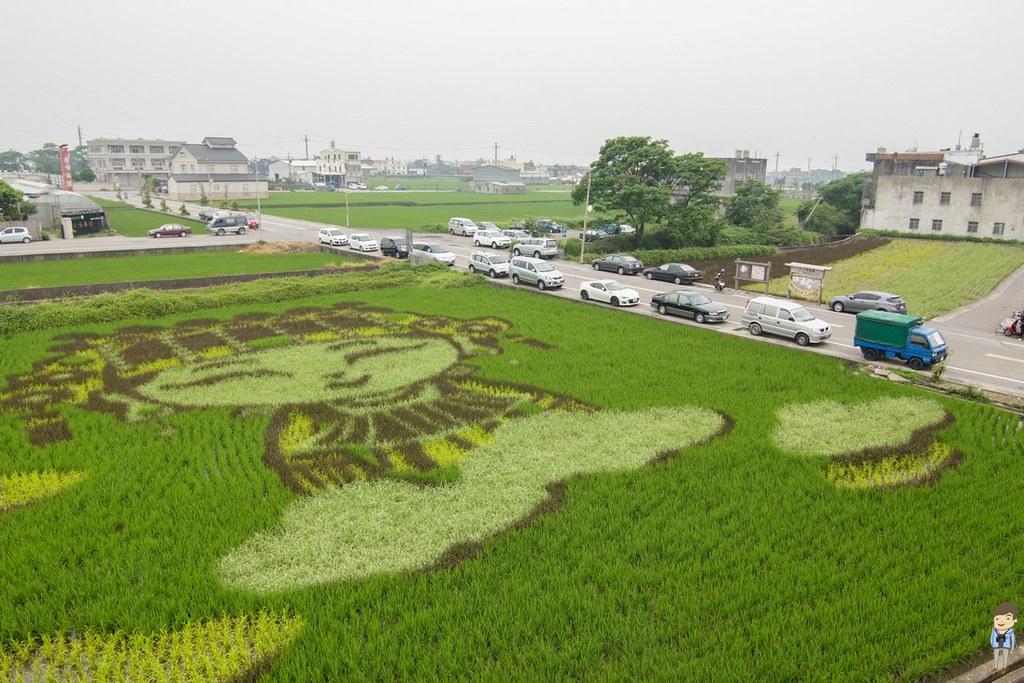 苑裡彩繪稻田 (5)
