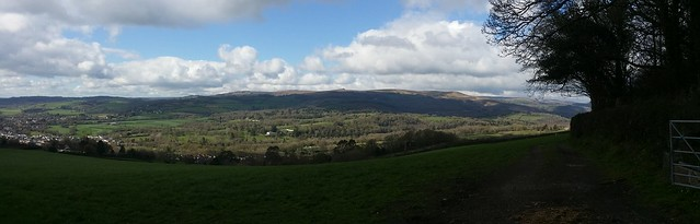 Panorama from edge of Furzeleigh Plantation