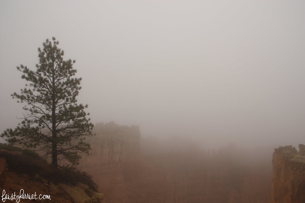 Bryce Canyon National Park_feistyharriet_2015 (3)