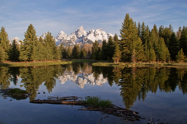tranquility in the TETONS