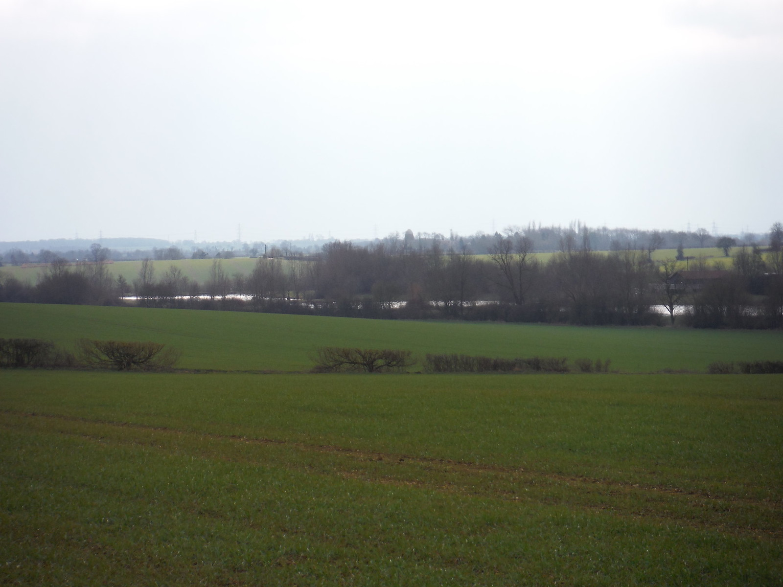 Fishing Lakes in Valley (II) SWC Walk 116 Wendens Ambo [Audley End station] Circular (Extension)