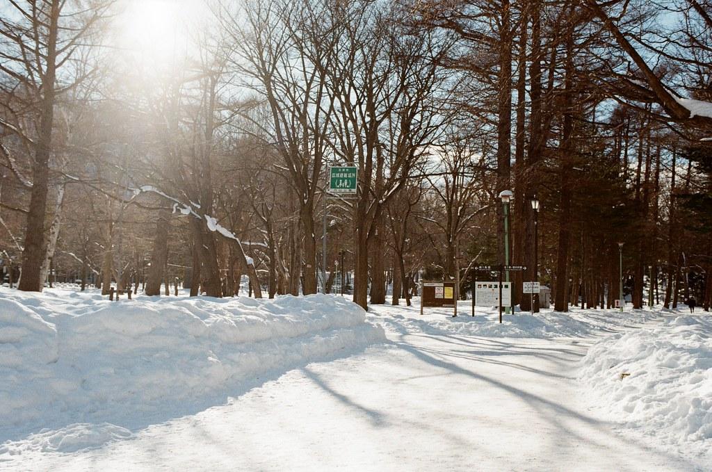 北海道神宮 Japan / Kodak ColorPlus / Nikon FM2 2016/02/01 北海道神宮,第一次來這裡,看到樹和雪的景,很美。  在來北海道之前,我都以為下雪的地方是看不到太陽的,但我好像白癡,太陽都一直存在著!  Nikon FM2 Nikon AI AF Nikkor 35mm F/2D Kodak ColorPlus ISO200 8265-0002 Photo by Toomore