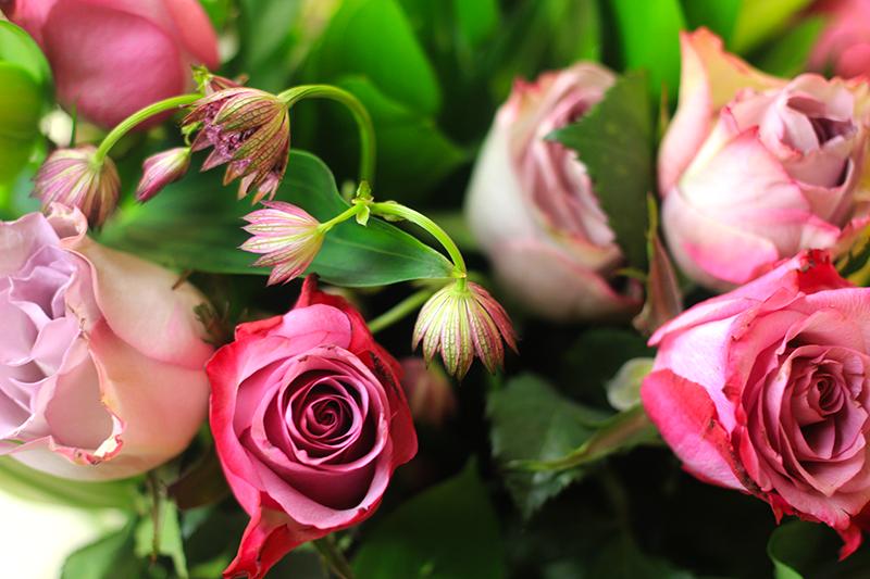 Prestige Flowers 1