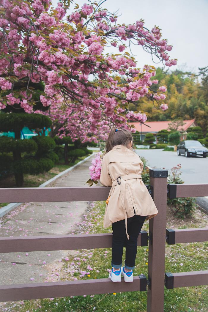 Olga Choi fashion blogger South Korea myblondegal kids fashion-02421
