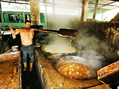 people factory venezuela traditional merida sugarcane pacoalfonsocom