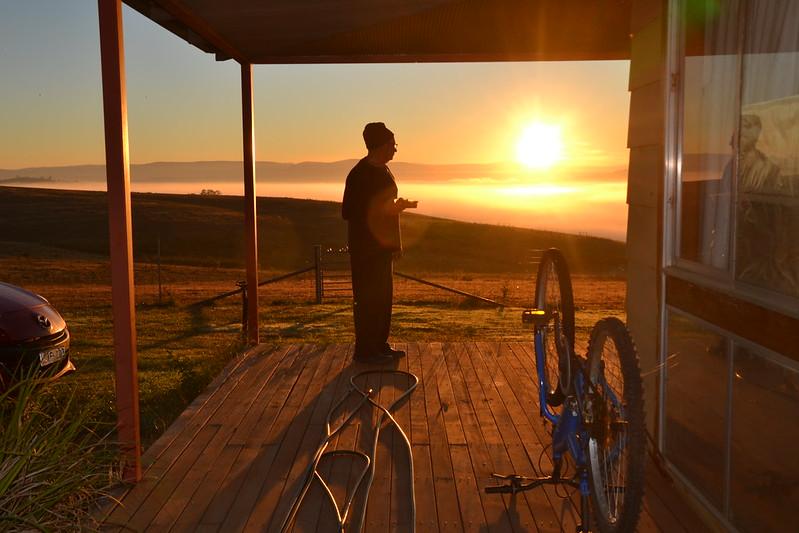 Early morning at Munderoo