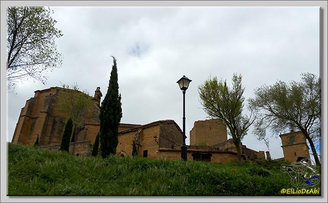 Ruta del Vino en La Rioja Alta (14)