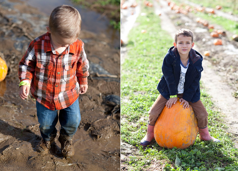 PumpkinPatch2015-9