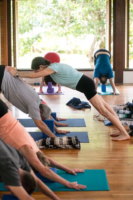 Blue Osa Yoga