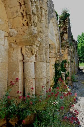 Dans les ruines de l'ancienne abbaye Saint Maurice (XIIe, XIIIe), Blasimon, Entre-Deux-Mers, Guyenne, Gironde, Aquitaine, France.