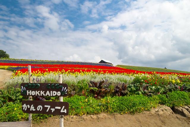 Hokkaido day6 07