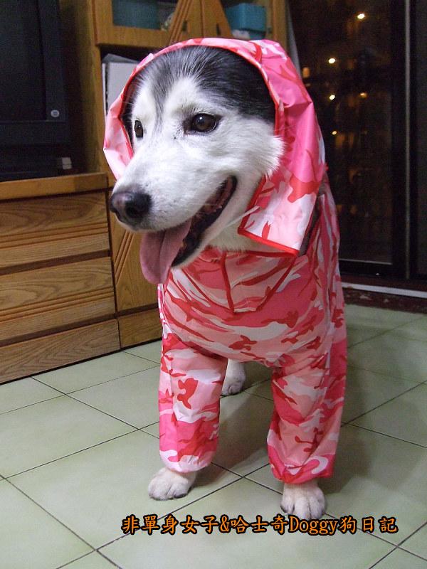 寵物雨衣迷彩服10