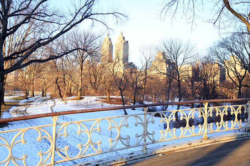 snow in central park new-york