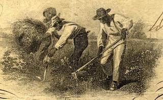 Confederate money slave vignette