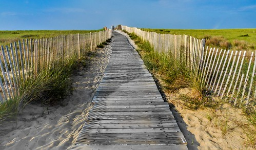 summer beach massachusetts cape cod andrewlincolnphotographer