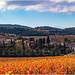 Palaja à l'automne by fred-32