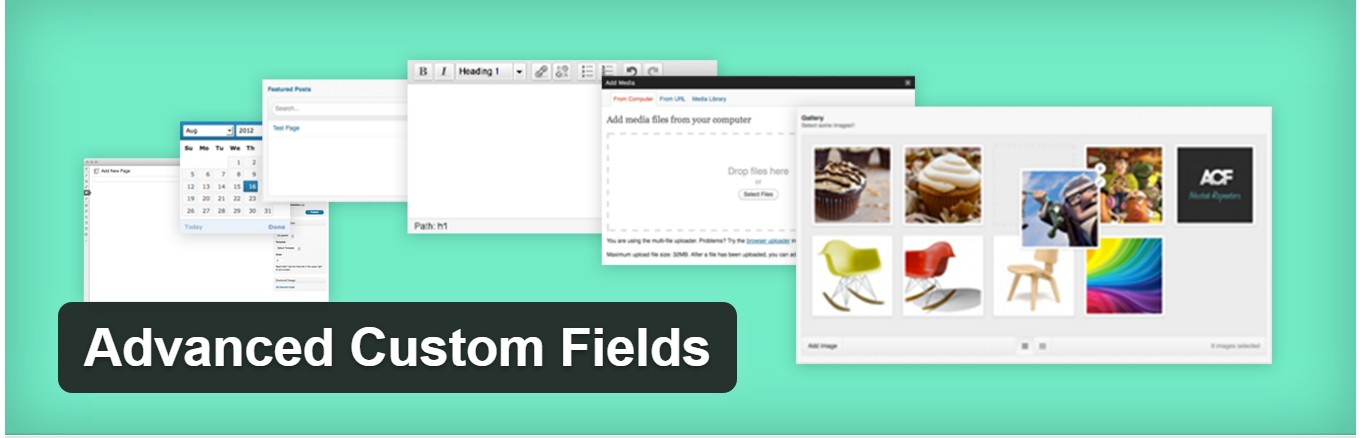 Advanced Custom Fields – custom fields in WordPress