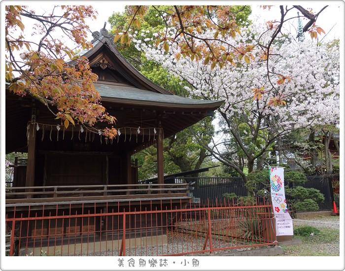 【日本東京】上野東照宮/野餐/賞櫻 @魚樂分享誌