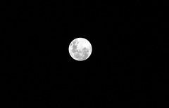 Lua cheia - Full Moon