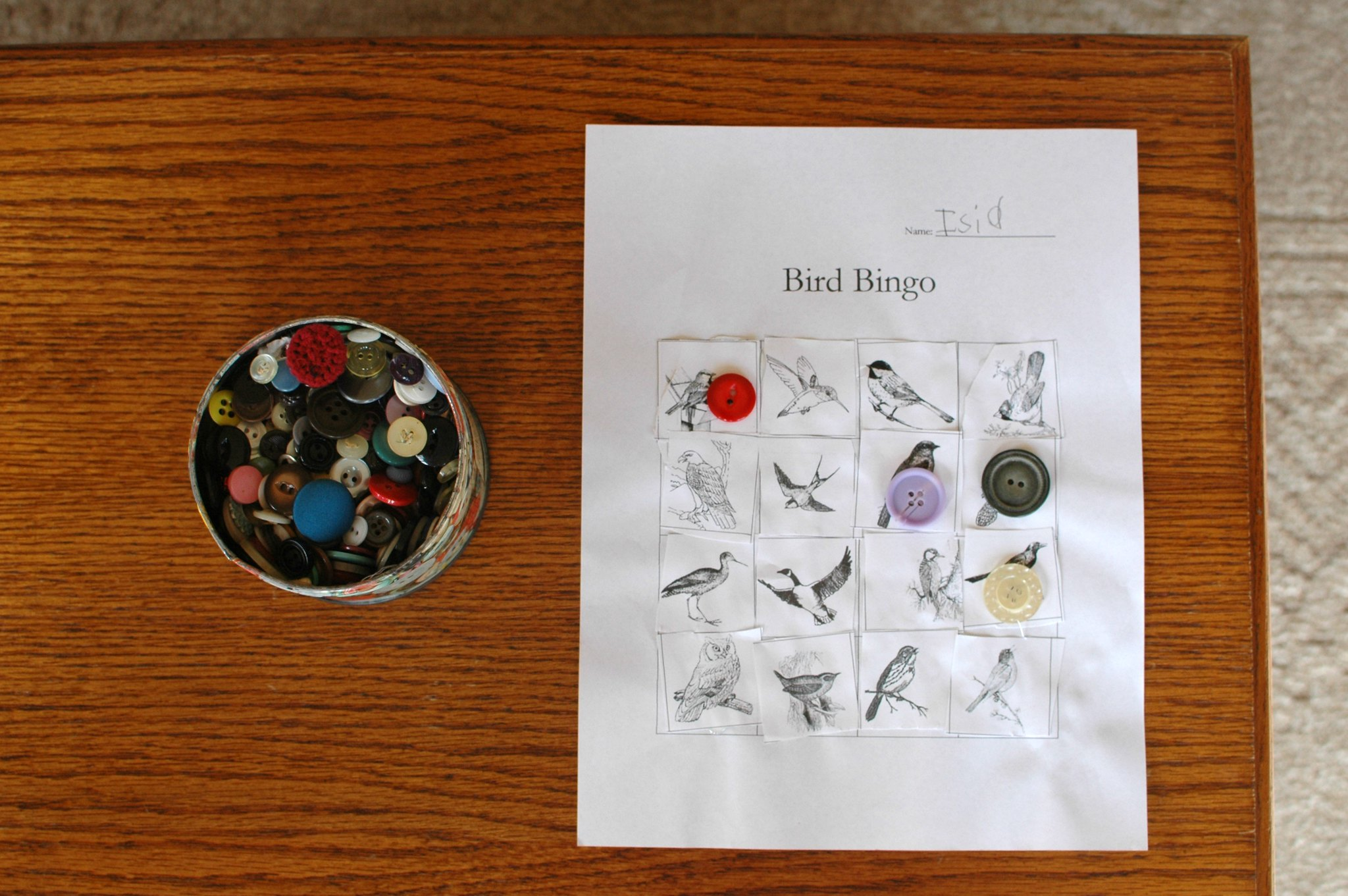Bird Bingo | Freshly Planted
