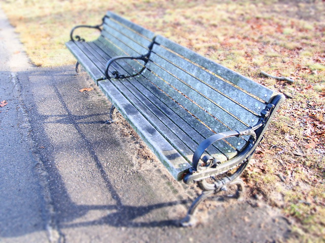 Bench in sun at Jamaica Pond