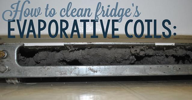 How to Clean a Fridge's Evaporative Coils