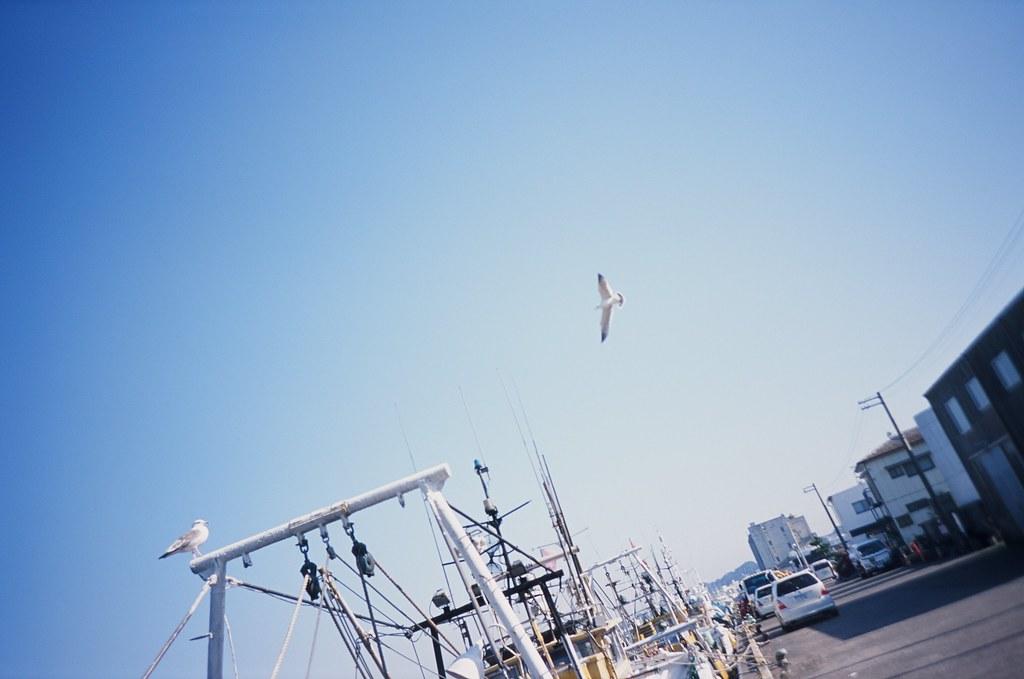 天空 銚子 Japan / Agfa CT Precisa / Lomo LC-A+ 2016/02/05 原來拍下來的天空是這麼這麼的藍,為什麼當下沒有感覺到。  Lomo LC-A+ Agfa CT Precisa 35mm 8706-0039 Photo by Toomore
