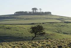 Minninglow Hill
