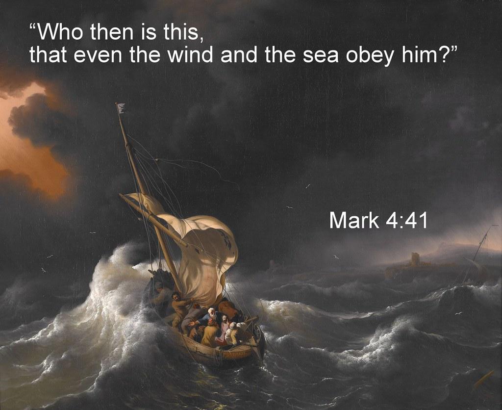 Mark4.41