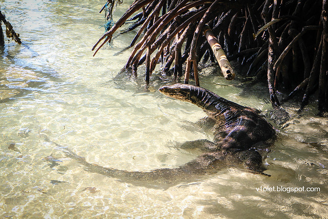 Pulau Putri Biawak1-9349rw