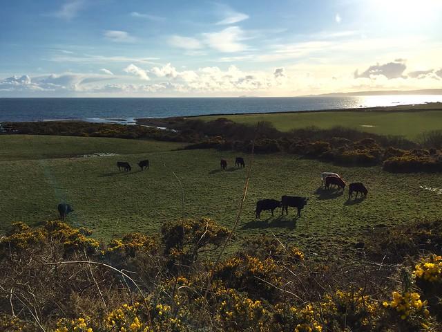 Isle of Arran - 28-03-2016