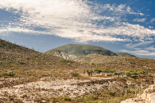 Paleoparque Las Ventas 2015 (03)