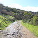 Trail by Corbie