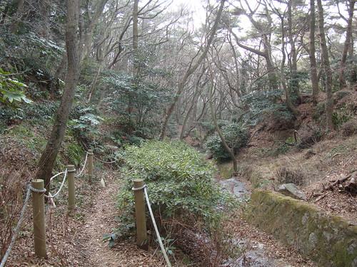 Old Path on Yeongdo